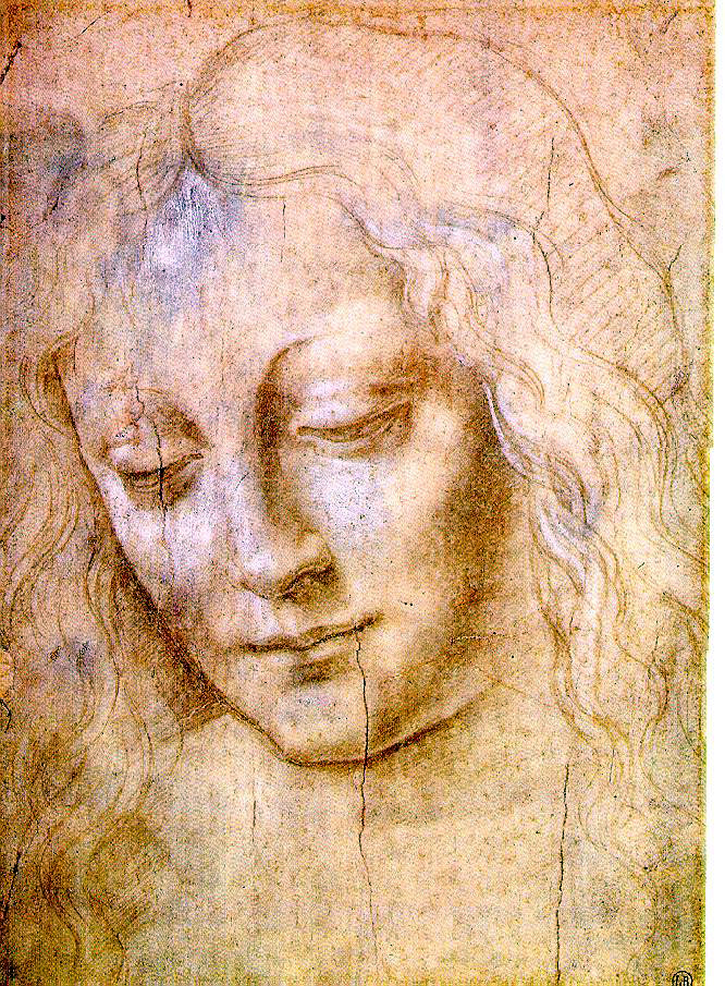 da Vinci's Head of A Young Woman